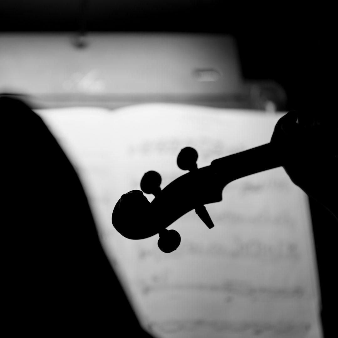 The malta philharmonic musicians in action.